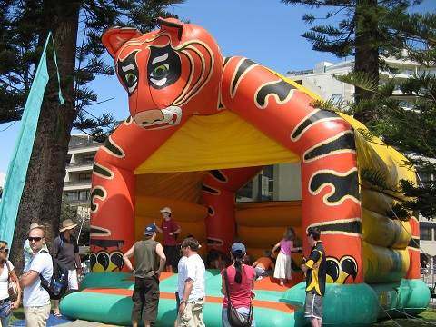 Tiger Event Jumping Castle Combo Sydney