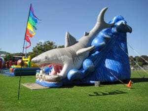 Giant Shark Dry Slide