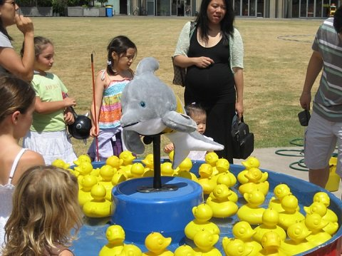 Duckpond Carnival Game Hire